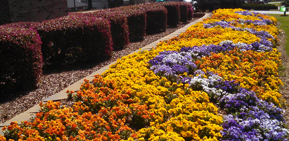 Commercial Landscaping in Woodstock, GA